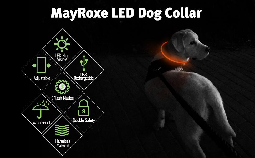 Mayroxe LED dog collar