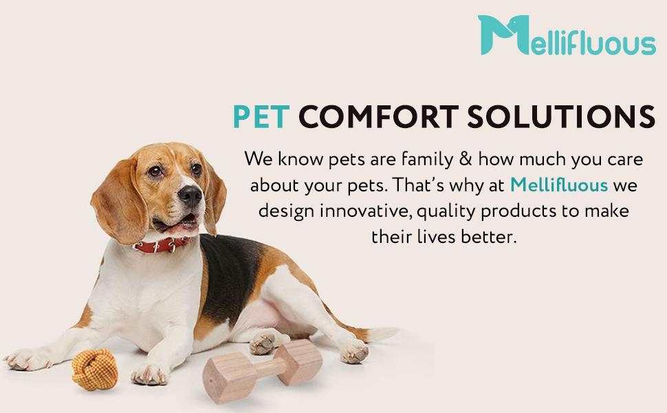 Mellifluous - Pet Comfort Solutions