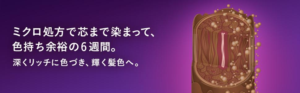 一本の髪の断面図にミクロ色素が浸透していくことを示すイラスト。 背景は紫。