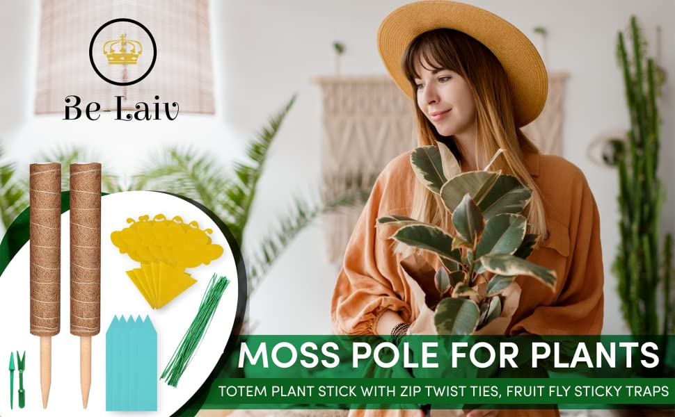 Plant Stakes