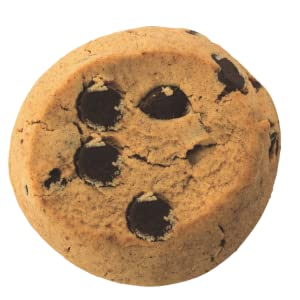 peanut butter gluten free vegan plant based healthy cookie with choc chips