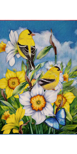 Hzppyz Spring Summer Flower Butterfly Yellow Birds Garden Flag