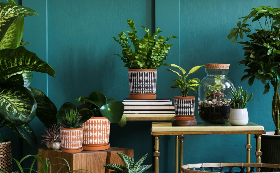 Handcrafted geometric design planter pots with drainage hole and matching saucer