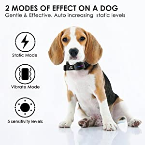 bark shock collar for dogs bark collar for medium dogs shock bark collar no bark collar