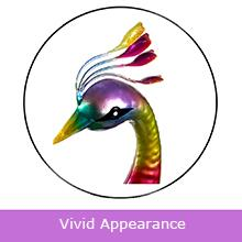 Vivid Appearance