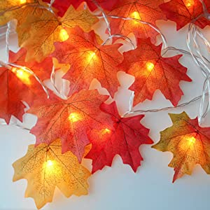fall lights battery operated
