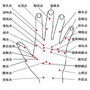 Hand Strength Grip & Finger Stretcher