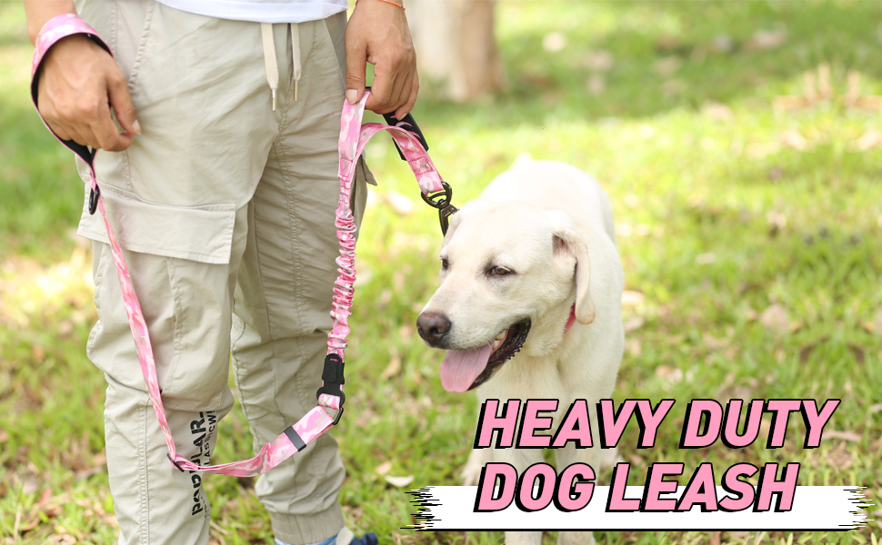 Heavy Duty Leash for Large Dogs