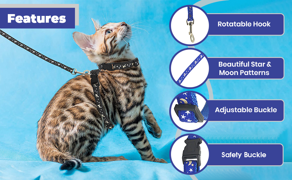cat harness 4
