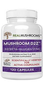 vitamin d2 zinc supplement