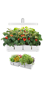 GrowLED Height Adjustable Indoor Plant Grow Garden Kit with 2 Hydroponic Boxes