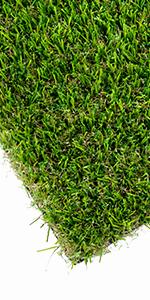 Grass pee pads