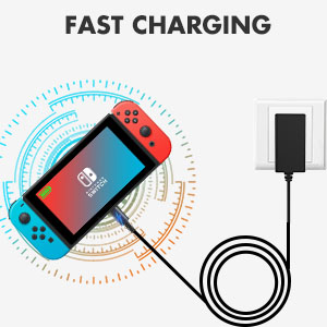 fast charger for switch
