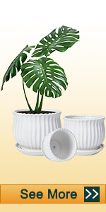 Ceramic White Pots with Vertical Stripes