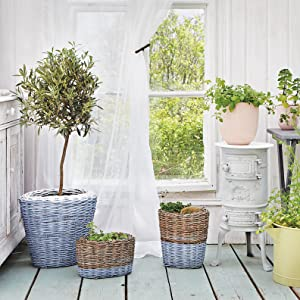 baskets and plants decorated with pintyplus spray paints