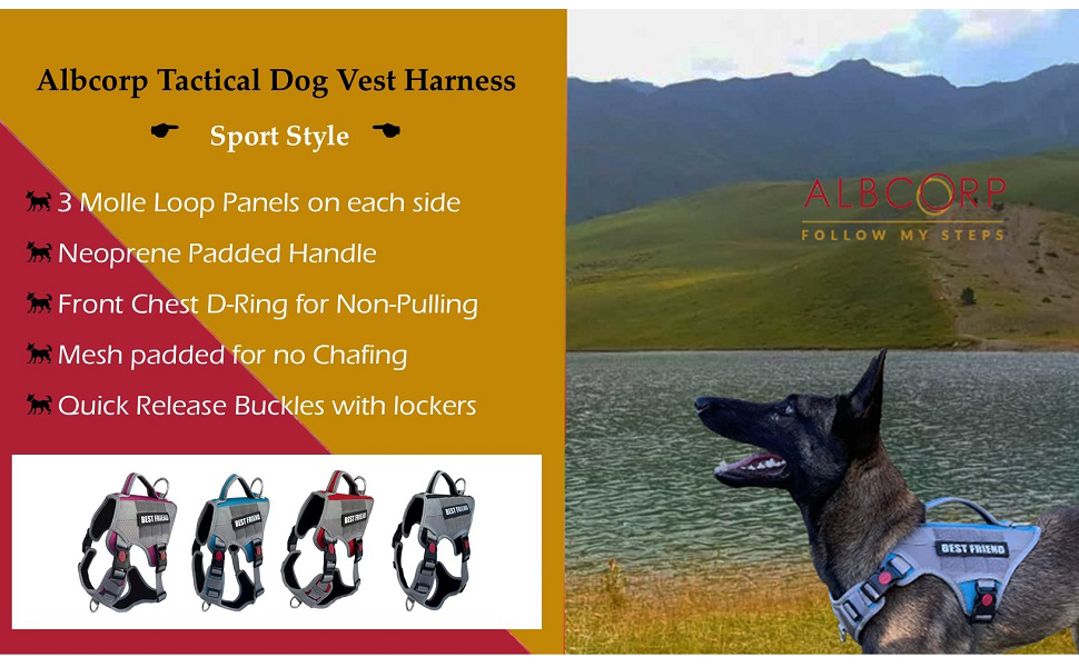Luna on Albcorp Tactical Dog Vest Harness - Sport Style.