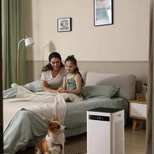air purifier smoke, air purifier with hepa filter,air purifier