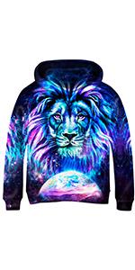 animal hoodies for boys girls