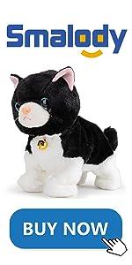 BKACK CAT