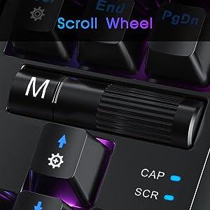 Roller Button Control