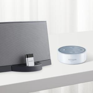 Work with Amazon Echo Dot