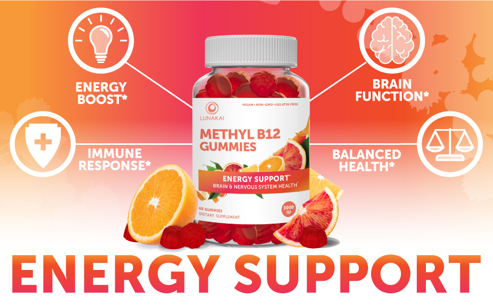 B12 Energy Support