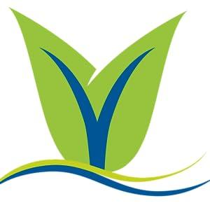 Vianda logo v leaf only green and blue swoosh