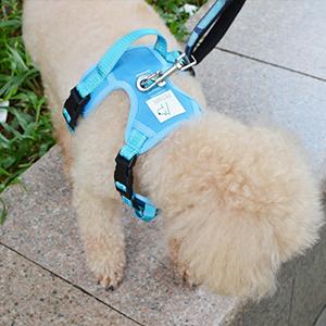 dog reflective vest escape proof