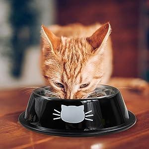 cat food bowl cat water bowls