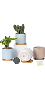 4 inch ceramic plant pots with bamboo trays