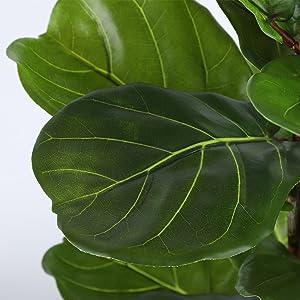 Artificial Ficus Lyrata Plant