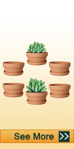 4.5 inch shallow clay pot