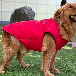 large dog Winter clothing