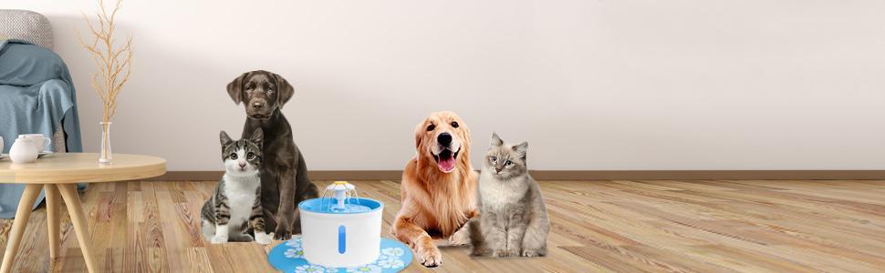 BTMETER pet drinking dispenser