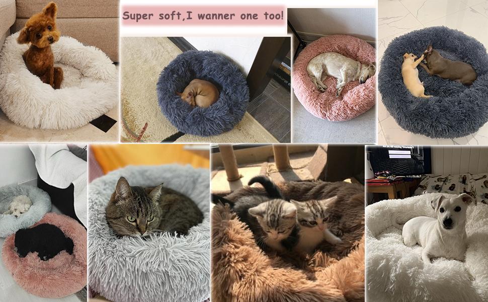 calming dog cat beds