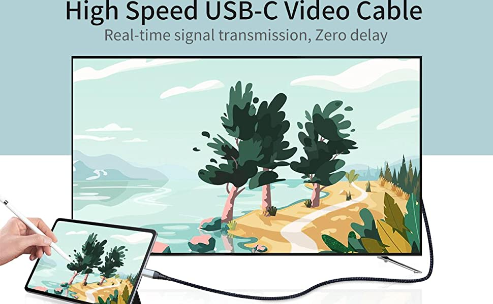USB C Video Cable