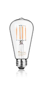 ST21 Glass Bulb