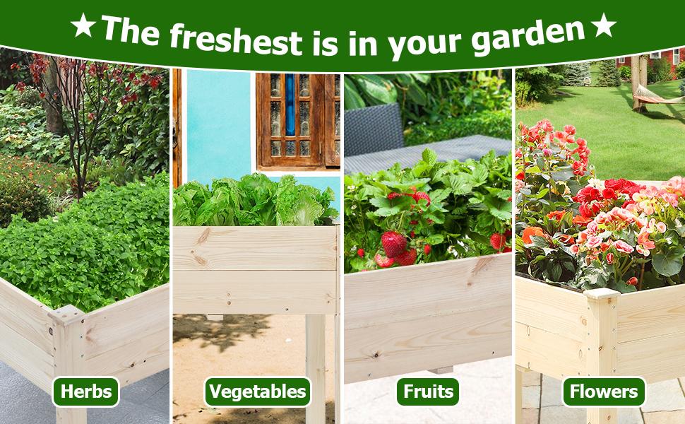 raised garden bed for herbs vegetables flowers fruits home backyard