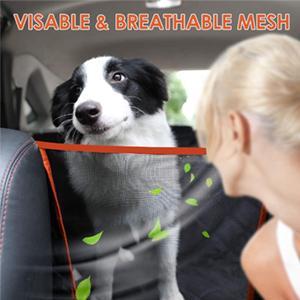 Mesh Visual Window