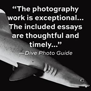 """The photography work is exceptional..."" - Dive Photo Guide"