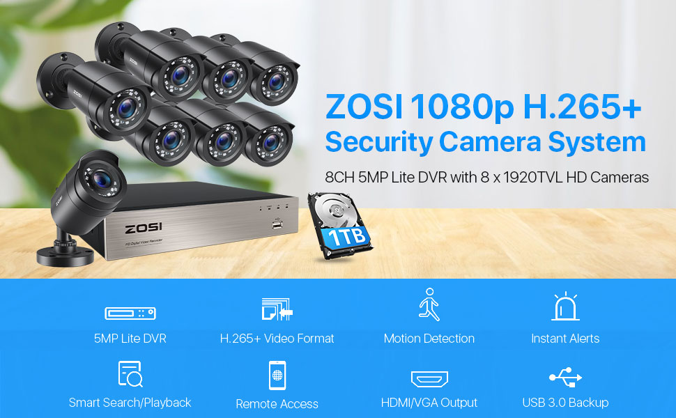 8WN-106B8S-10 8 channel security cameras system