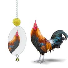 chicken coop toys