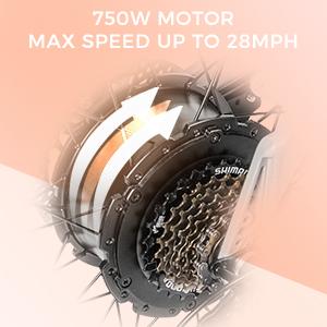 motor 500W