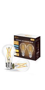 A19 LED Edison Bulb