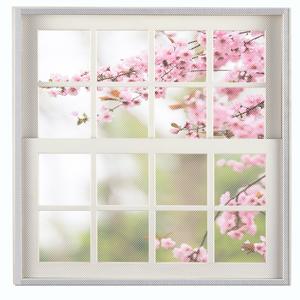 Double hang window screen with FLYZZZ Window screen