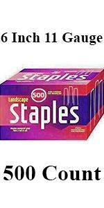 SodStaples500