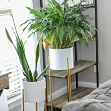 indoor tall plant pots with gold stand
