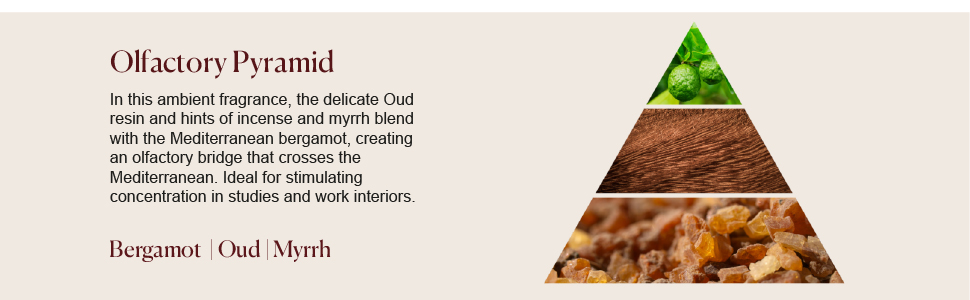 dr vranjes oud nobile diffuser ambient fragrance olfactory pyramid bergamot oud myrrh