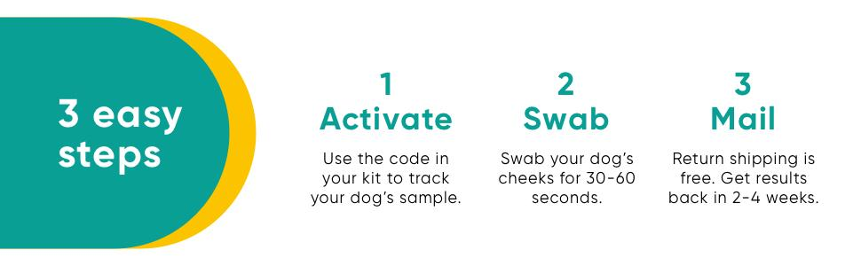 3 easy steps: 1. Activate your kit, 2. Swab your dog's cheek, 3. Mail kit with free return shipping