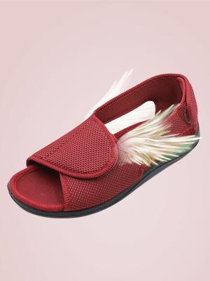 MCB262女鞋